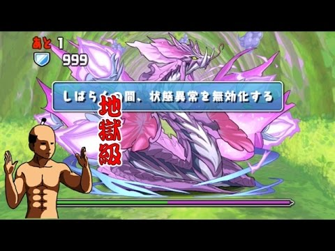 【パズドラ】紫の華龍【回復なし】紫の僻地 地獄級 超ベジットPT※ノーコン・ソニア=グラン入り